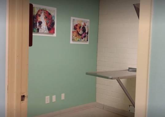 Sheets Pet Clinic