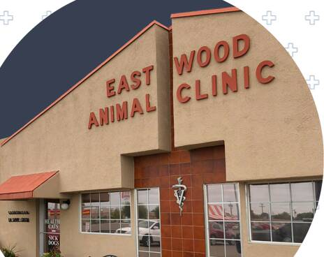 Eastwood Animal Clinic