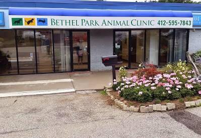 Bethel Park Animal Clinic Bethel Park