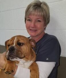 Karns Animal Clinic Knoxville