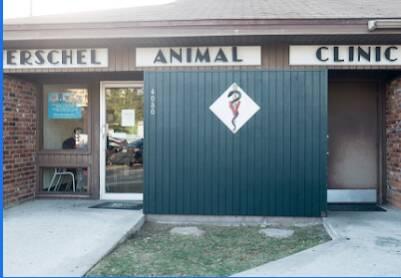 Hershel Animal Clinic Jacksonville