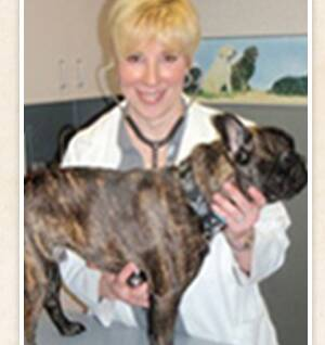 Dr. Lori M. Teller