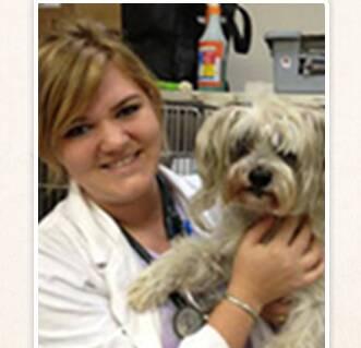 Dr. Christina White