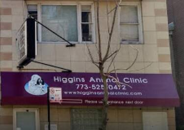 Higgins Animal Clinic Arlington