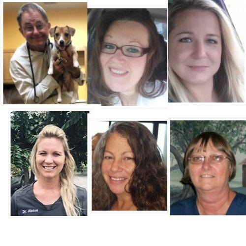 Dade City Animal Clinic Doctors