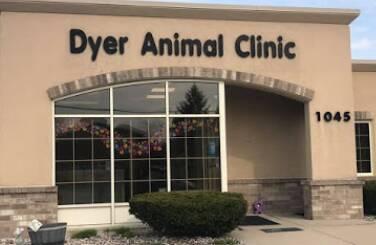 Dyer Animal Clinic