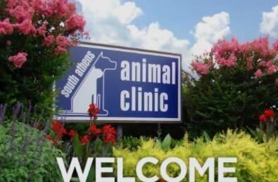 South Athens Animal Clinic Address