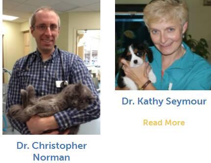 Sunray Animal Clinic Doctors