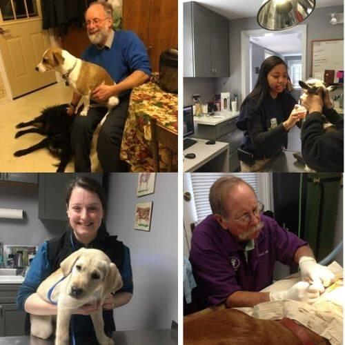 Roxbury Animal Clinic Doctors