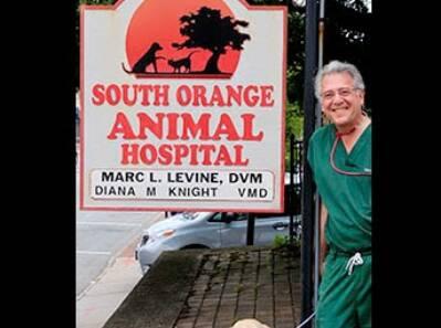South Orange Animal Hospital