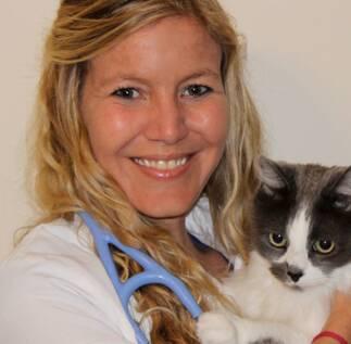 Northlake Animal Hospital Doctors