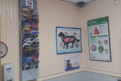 Lefferts Animal Hospital