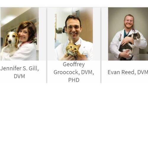 Transit Animal Hospital Doctors