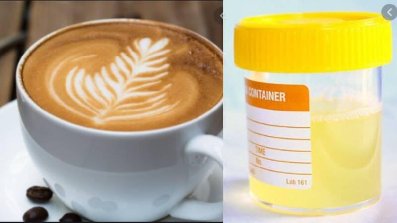 Urine Smells Like Coffee